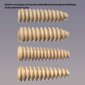 system mocowania przeszczepu-śruby interferencyjne